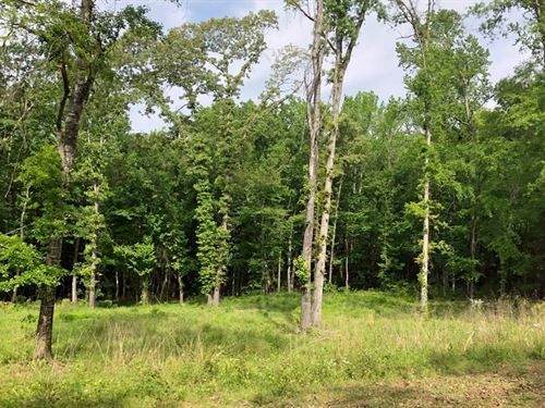 Lot In Deerwood Park Addition : Palestine : Anderson County : Texas