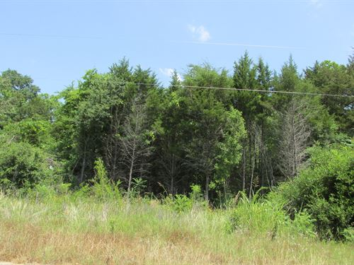 Great Wooded Lot Inside City Limits : Palestine : Anderson County : Texas