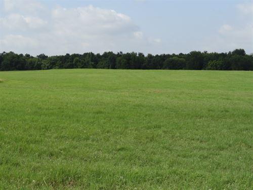 Houston County Land For Sale : Pennington : Houston County : Texas