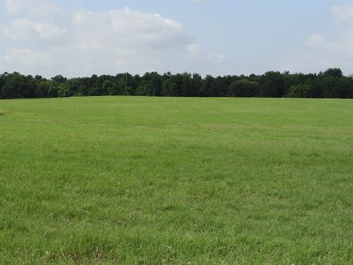 Houston County, Creek, Pond : Pennington : Houston County : Texas