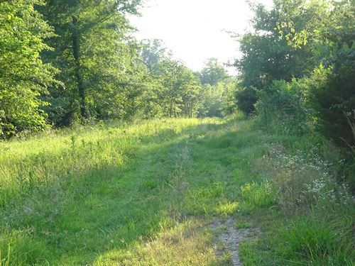 Recreational Hunting Property : Powderly : Lamar County : Texas