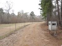 Land Neches River, Hardwood Bottom : Ratcliff : Houston County : Texas