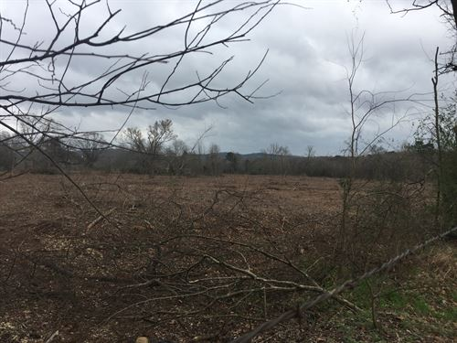Hunting/Recreational Land, Cherokee : Rusk : Cherokee County : Texas