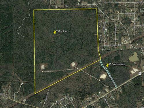 391 Acres Beautiful Development : Vidor : Orange County : Texas
