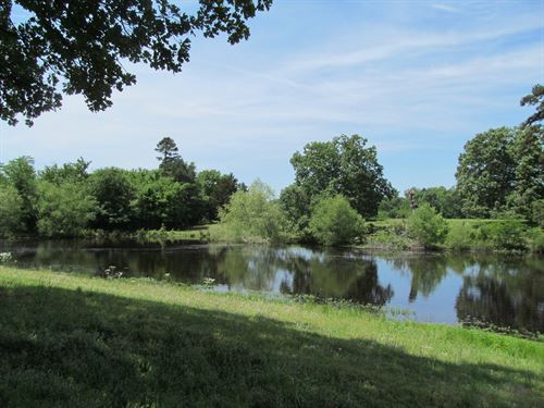 View To Lake Cypress Springs, 50 : Winnsboro : Franklin County : Texas