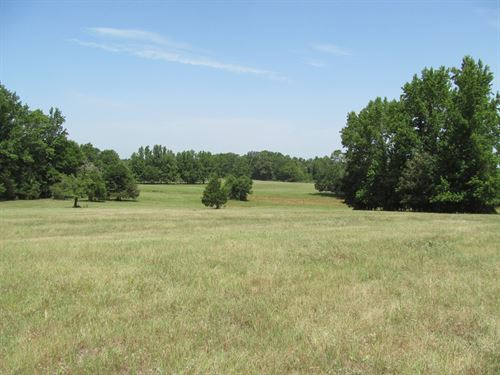 83 Acres Wood County, Winnsboro : Winnsboro : Wood County : Texas