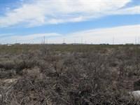 10 Acres Land, Highway 285 : Fort Stockton : Pecos County : Texas
