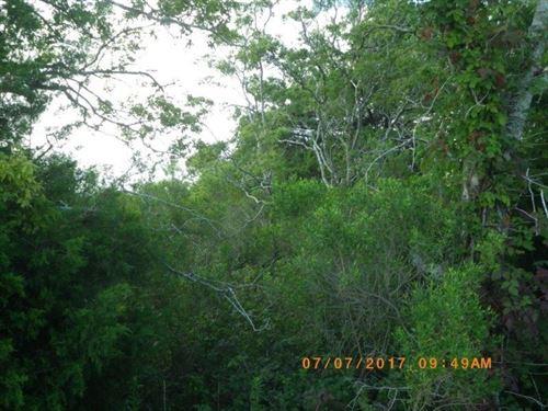 Texas Ranchette Tract 3 : Bay City : Matagorda County : Texas