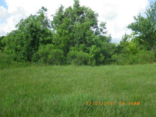 Texas Ranchette Tract 7 : Bay City : Matagorda County : Texas