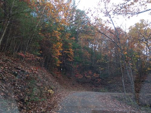 Wonderful Investment Opportunity : Austinville : Carroll County : Virginia