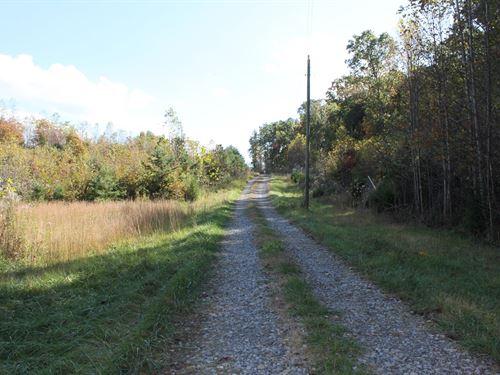 7 Acres Near Historic Bedford, VA : Bedford : Virginia