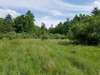 Large Tract of Land in Bland, VA : Bland : Bland County : Virginia