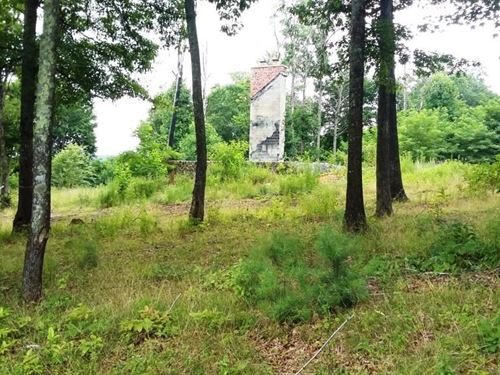 Wooded 12 Acres Foundation/Septic : Bland : Virginia