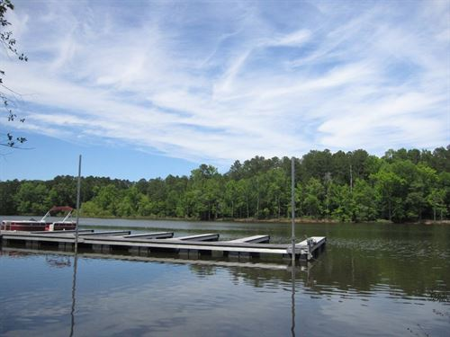 Lake Bargain Lot Buggs Island Lake : Buffalo Junction : Mecklenburg County : Virginia