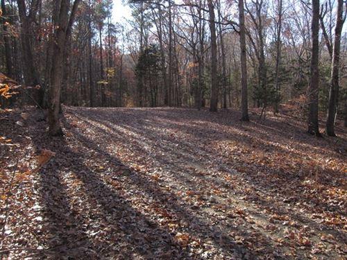 Lake Access Lot Buggs Island Lake : Clarksville : Mecklenburg County : Virginia