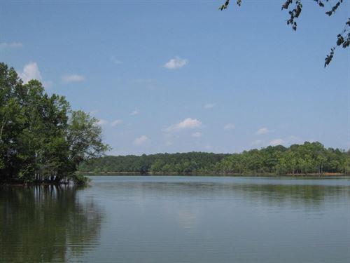 25 Acres Adjoining Kerr Lake, VA : Clarksville : Mecklenburg County : Virginia