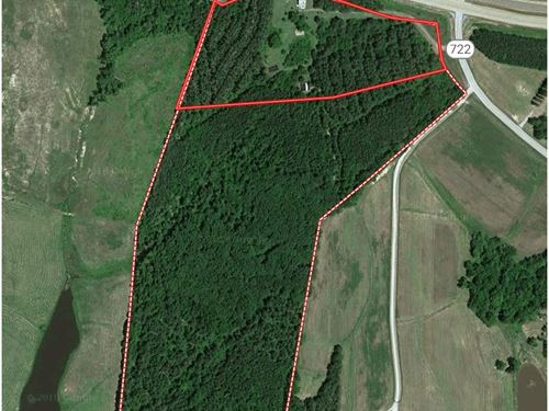 Excellent Timber Investment : Clarksville : Mecklenburg County : Virginia