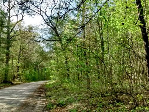 4.48 Acre Lunenburg County, Va : Drakes Branch : Lunenburg County : Virginia
