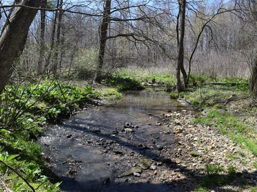 Acreage Streams Minutes From Town : Floyd : Virginia