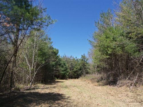 Land For Sale in Floyd VA : Floyd : Virginia