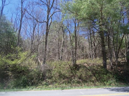 Wooded Building Lot in Floyd VA : Floyd : Virginia