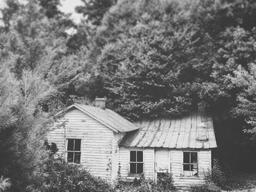 Home And Acreage in Floyd VA : Floyd : Virginia