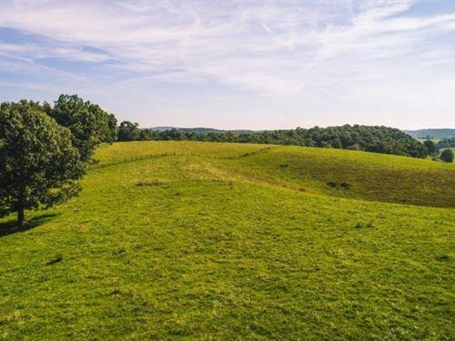 Farmland Auction in Floyd VA : Floyd : Virginia