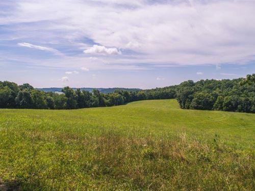 Farm at Auction in Floyd VA : Floyd : Virginia