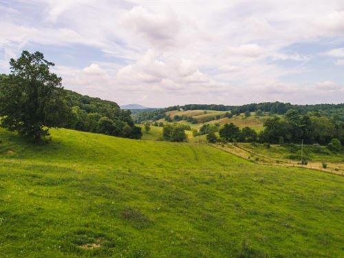 Hunting, Farm Recreational Land : Floyd : Virginia