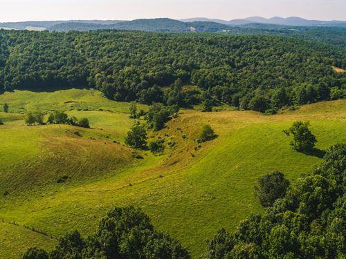 Large Land Auction in Floyd VA : Floyd : Virginia