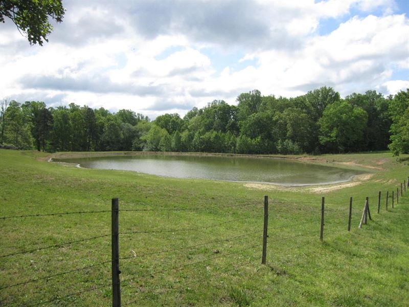 Auction, 102 AC Cattle Farm Birch : Keeling : Pittsylvania County : Virginia