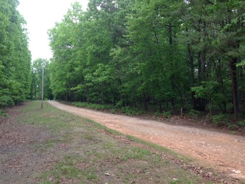 Wooded Home Site Near Keysville, VA : Keysville : Lunenburg County : Virginia