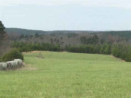 50 Acres Blue Ridge Mountain Views : Long Island : Pittsylvania County : Virginia