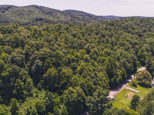 All Wooded Land in Meadows Dan VA : Meadows Of Dan : Floyd County : Virginia