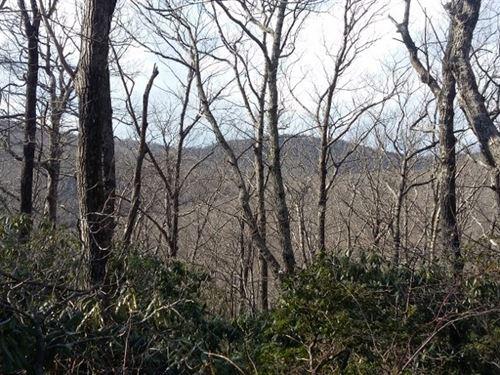 Mountain Subdivision Land in VA : Meadows Of Dan : Patrick County : Virginia