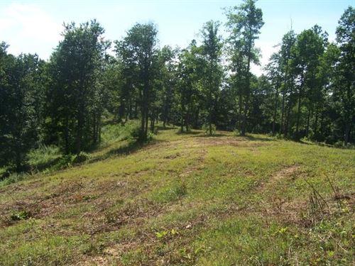 12.92 Acres Land Patrick County : Meadows Of Dan : Patrick County : Virginia