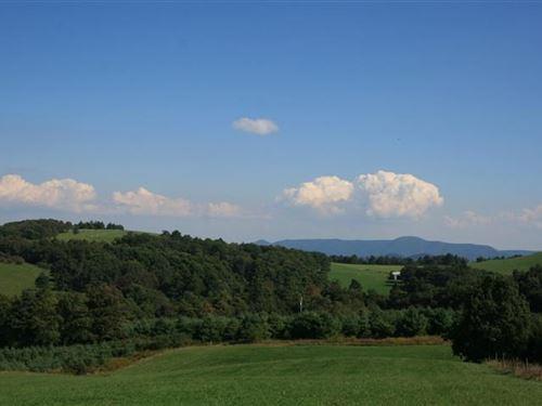 28.75 Acres Land Patrick County : Meadows Of Dan : Patrick County : Virginia