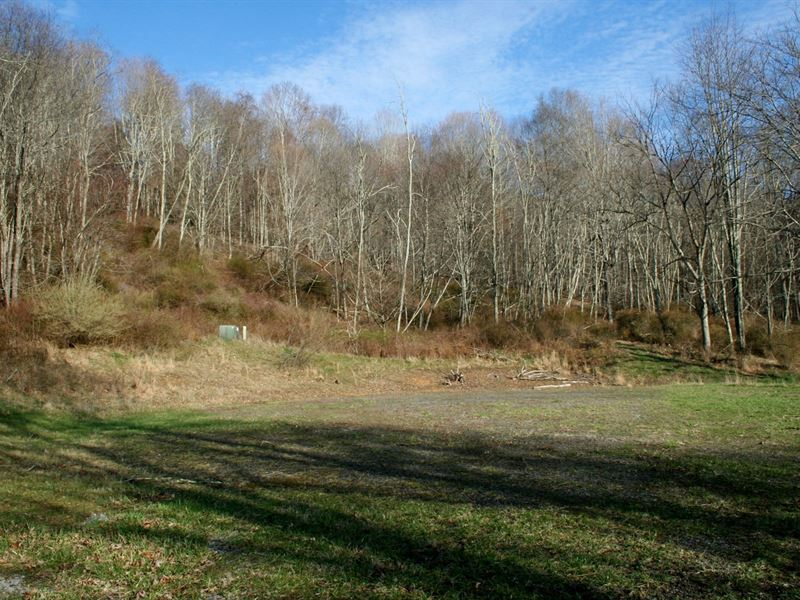 Lot 9, Lowry Low Hills : Monterey : Highland County : Virginia