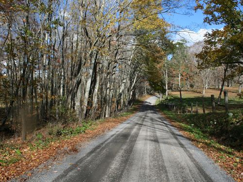 6 Acres, Level Wooded Building Lot : Monterey : Highland County : Virginia