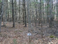 Lot 6 in Low Hills Subdivision : Monterey : Highland County : Virginia