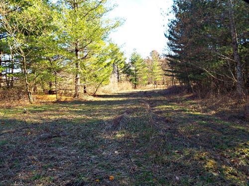 Fantastic Hunting Land Bishop, VA : North Tazewell : Tazewell County : Virginia