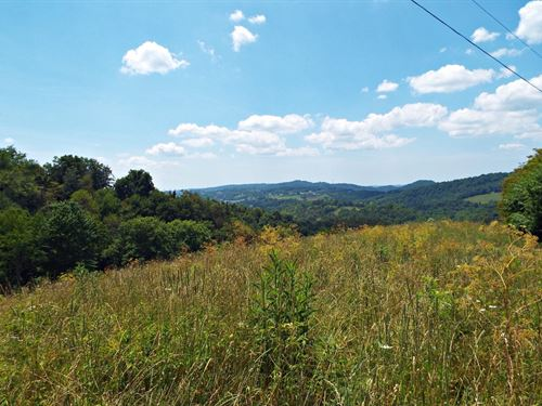 Land Huge Potential Pounding Mill : Pounding Mill : Tazewell County : Virginia