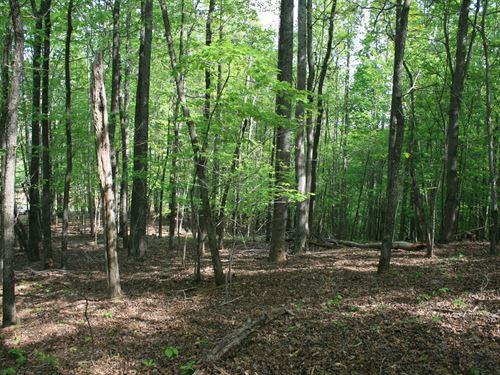 27.5 Acres Land Located Henry : Ridgeway : Henry County : Virginia