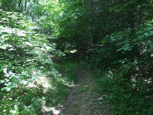 Wooded Acreage in Wythe County VA : Rural Retreat : Wythe County : Virginia