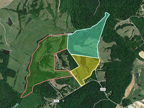 158+Ac Saxe Virginia Cattle Farm : Saxe : Charlotte County : Virginia