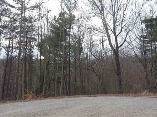Building Tract Premier Development : Stuart : Patrick County : Virginia