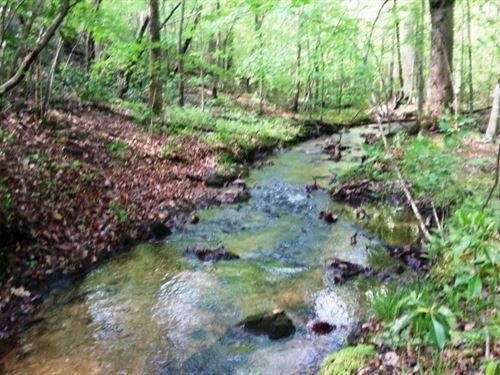 114.3 Acres Henry County, Va, Deer : Stuart : Henry County : Virginia