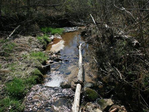 42.9 Acres Land Patrick County, VA : Stuart : Patrick County : Virginia