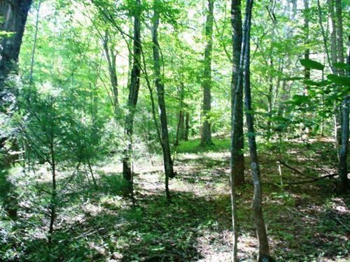 17.74 Acres Patrick County : Stuart : Patrick County : Virginia