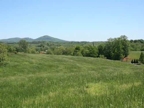 278.86 Acres Land Patrick County : Stuart : Patrick County : Virginia